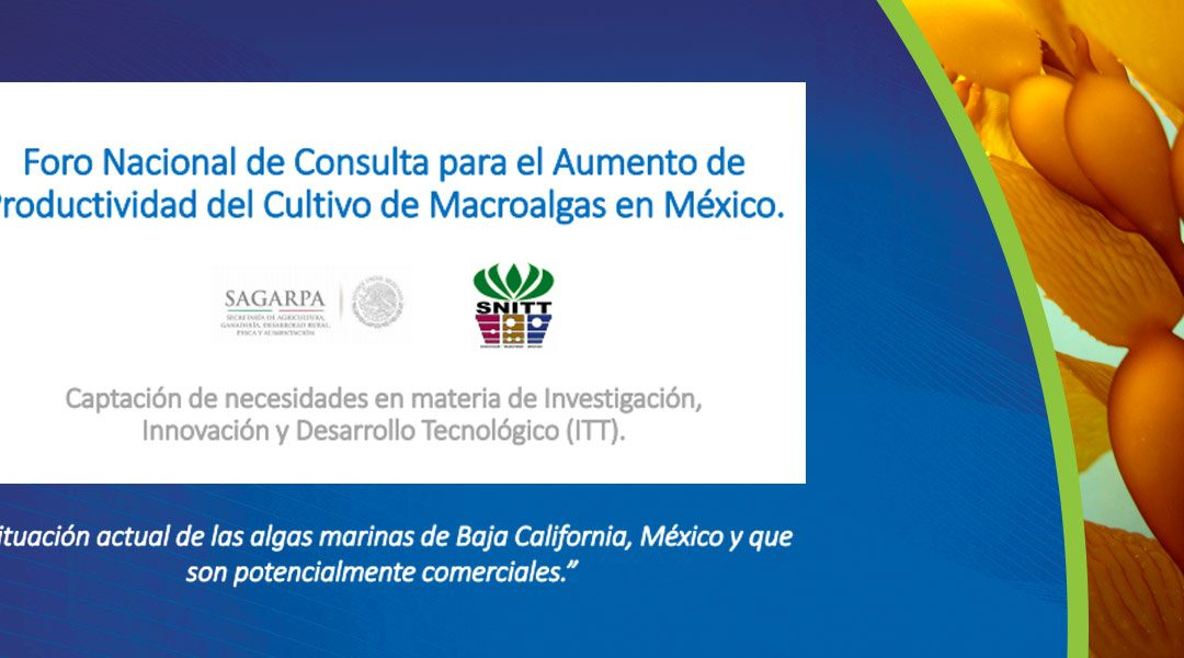 Algas Pacific at the Macroalgas National Forum Mexico